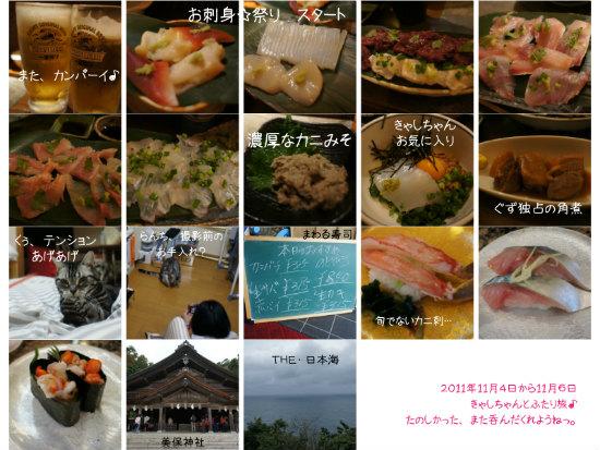 nekotabi2011112.jpg