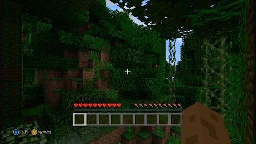 ジャングル地帯