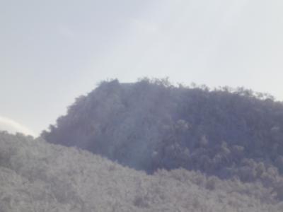 1月9日 藻琴山 052