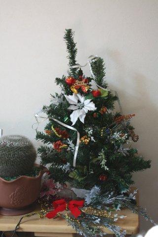 2011クリスマスツリー