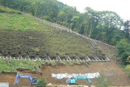 檜原村福祉モノレール16