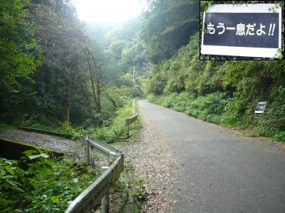 三ツ合林道04