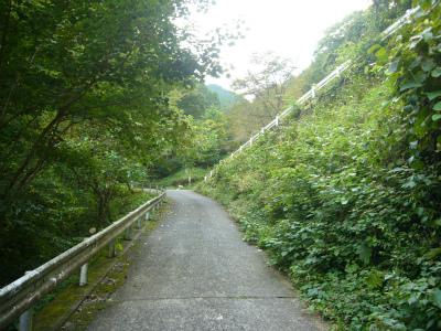 三ツ合林道05