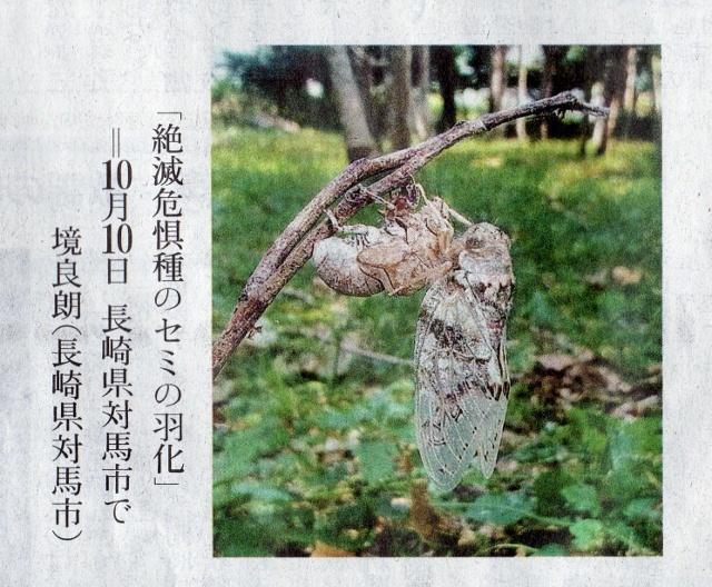 8写真ニュース2030 (640x528)