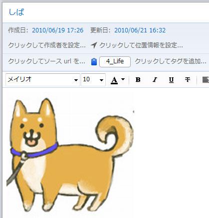 1stever-shiba.jpg
