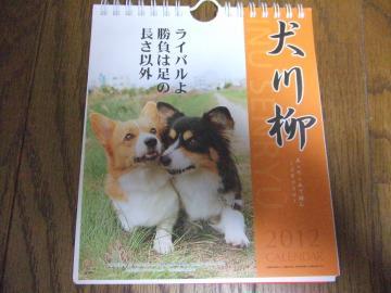 001_convert_20110906231201.jpg