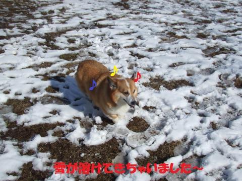 006_convert_20130201031634.jpg