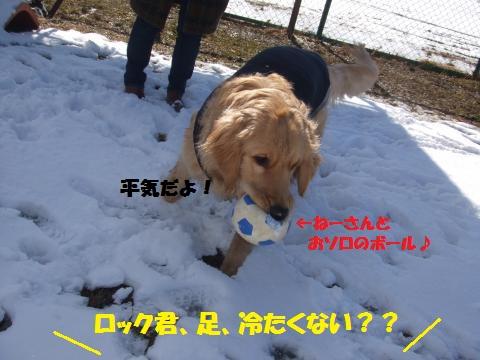 007_convert_20130201031529.jpg