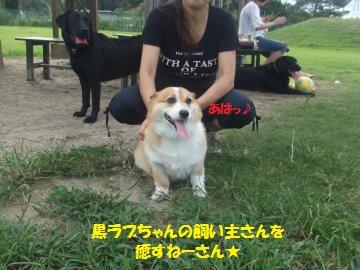 015_convert_20110912230141.jpg