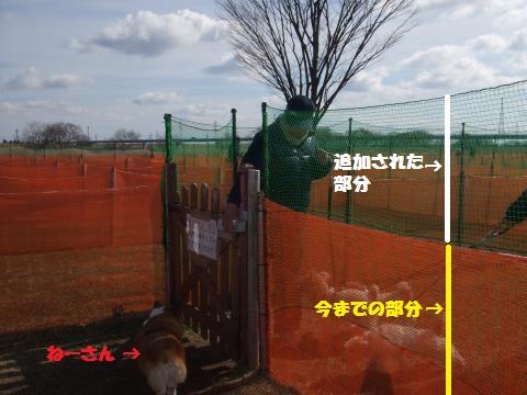 019_convert_20130217040859.jpg