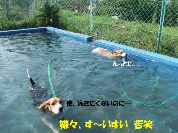 020_convert_20110902003118.jpg