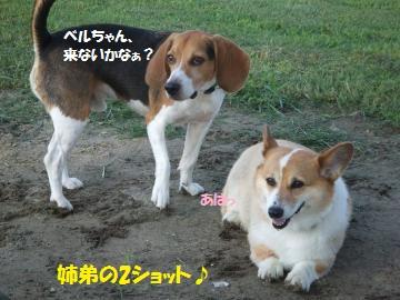 063_convert_20110902004120.jpg