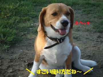 067_convert_20110902003638.jpg