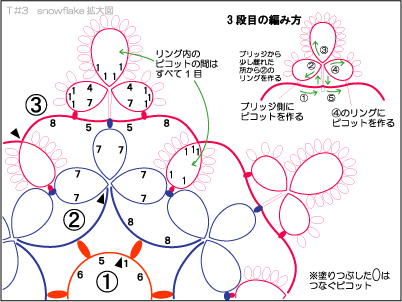 T#3-snowflake1(拡大図)(