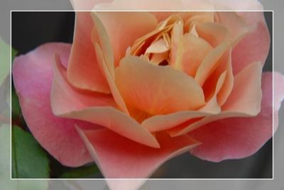 18_20101019153936.jpg