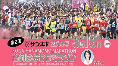hanamomo201411