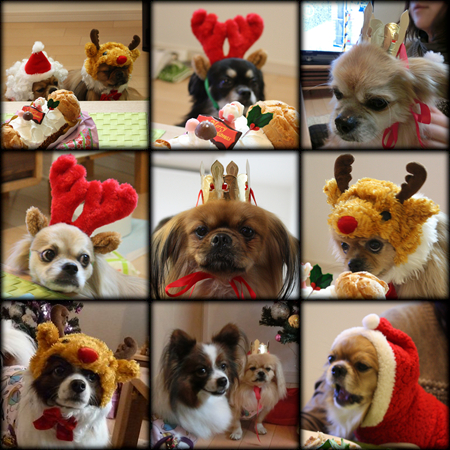 クリスマス会2012-23