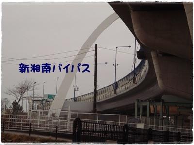 中島公園6