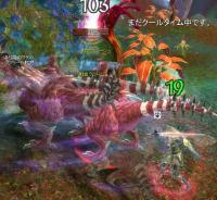 20110518b.jpg