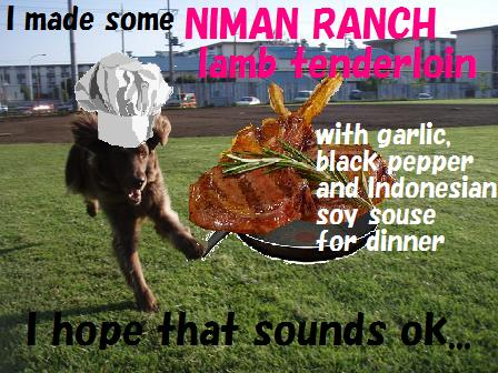 13MAY10 lamb chop