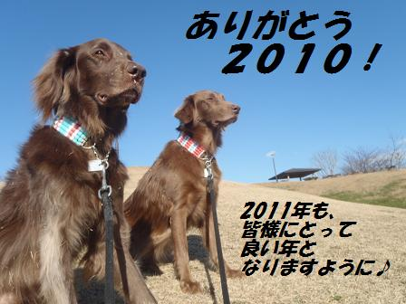 27DEC10 041thanx2010