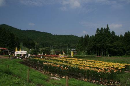 黒羽ゆり園