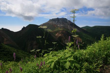 那須岳の夏