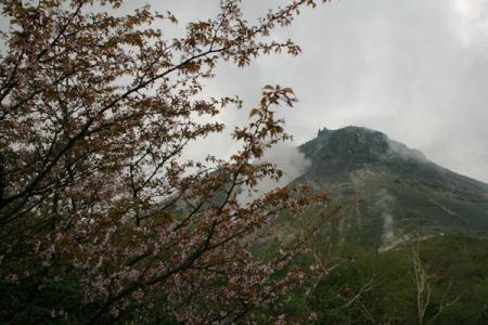 那須岳の初夏