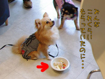 komusan_0623_008