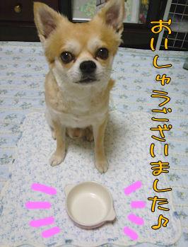 komusan_0623_009
