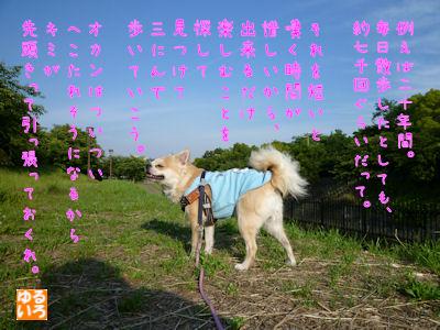komusan_0624_006