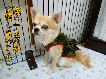 komusan_0630_003