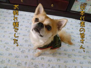 komusan_0630_005
