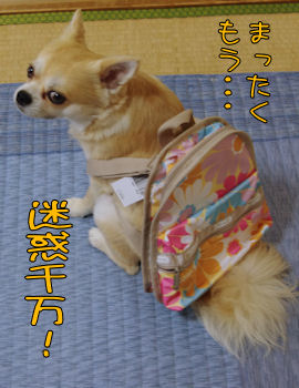 komusan_0709_003