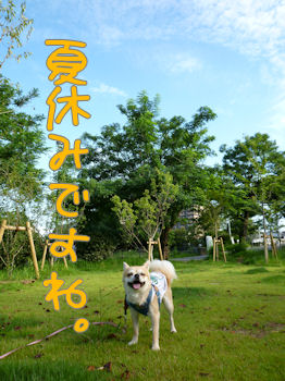 komusan_0721_001