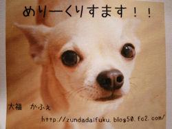 komusan_1228_006