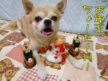 komugiokan_0101_004