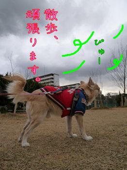 komugiokan_0106_005