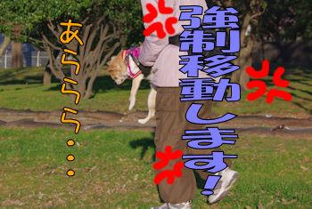 komugiokan_0121_005