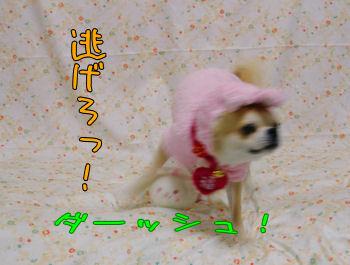 komugiokan_0201_002