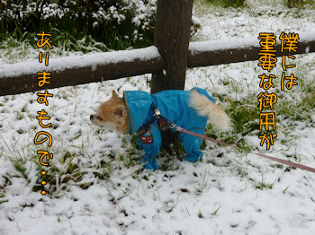 komugiokan_0211_002