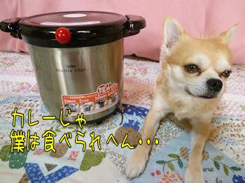 komugiokan_0217_003