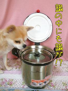 komugiokan_0217_004