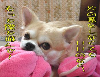 komugiokan_0217_006