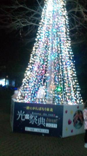 竹の塚ツリー3