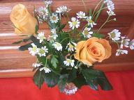 花市場のお花♪