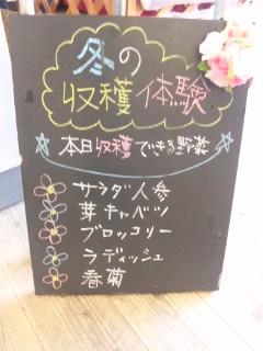 花の海 1-4
