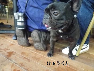13_20110530151120.jpg