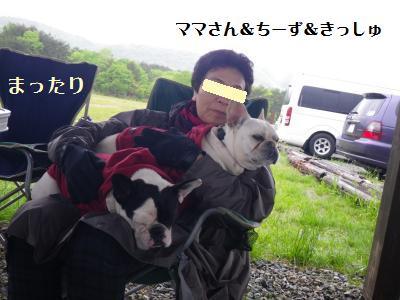 16_20110530150731.jpg