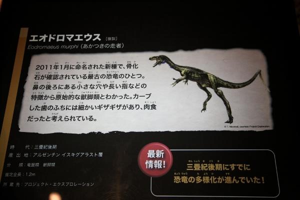 kyoryuhaku_0003f.jpg